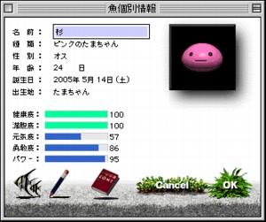 ピンクたまちゃん「杉」の個体情報