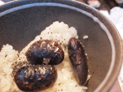 花豆の炊き込みご飯