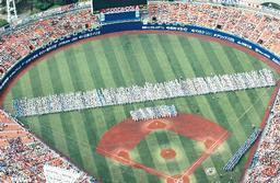 高校野球神奈川地区予選