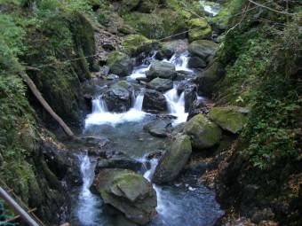 安倍の大滝へ向かう途中の渓流